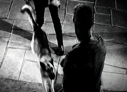 """""""Le salaire du diable"""" de Jack Arnold (1957)"""